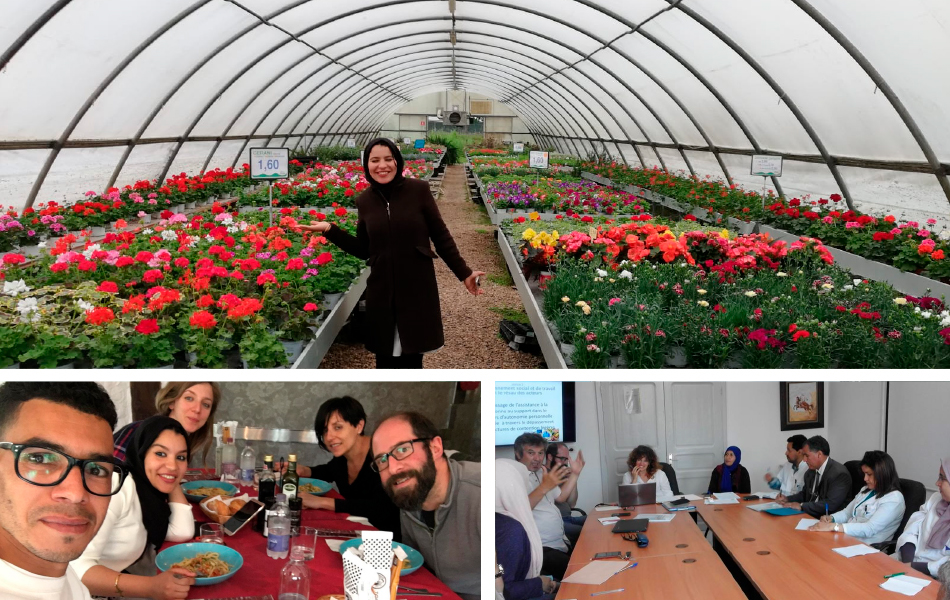 cooperazione internazionale marocco integrazione disabili al lavoro
